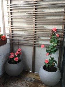 jardinière 16072017-2 R